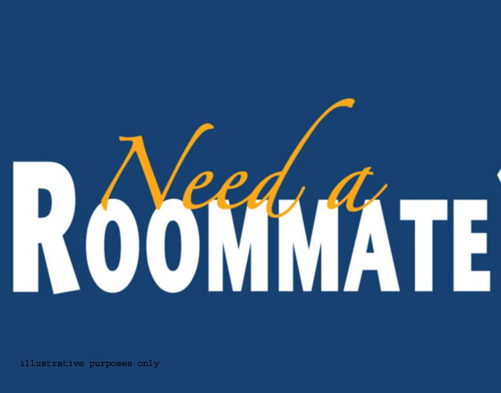 Need Roommate Near Houston AIG/Downtown