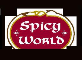 Spicy World of USA Inc